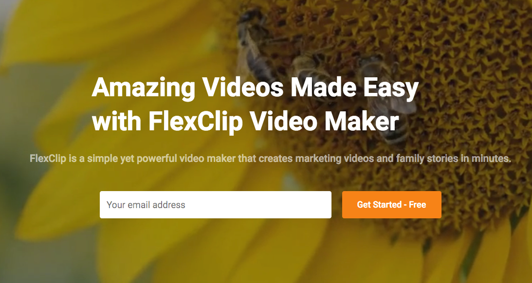 Flexclip Video Maker Easy Editing